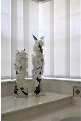 Orren Ellis Cortina Glass Cylinder Driftwood and Phaleanopsis Orchids Centerpiece