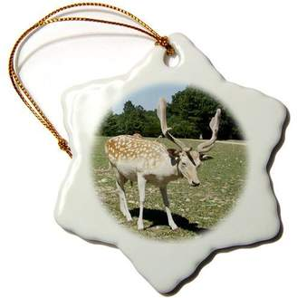 N. 3dRose orn_50350_1 Jackie Popp Nature Wildlife Animals - Silka deer - Ornaments