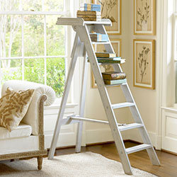 French Library Shelves Ladder