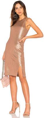 Splendid Astor Dress