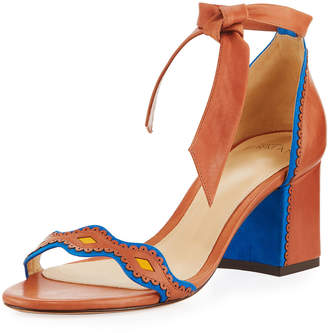 Alexandre Birman Embroidered Knotted Sandal