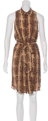 Equipment Silk Animal Print Dress