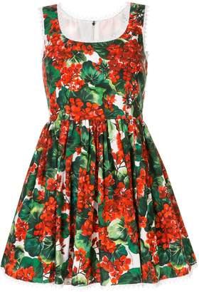 Dolce & Gabbana portofino print poplin dress