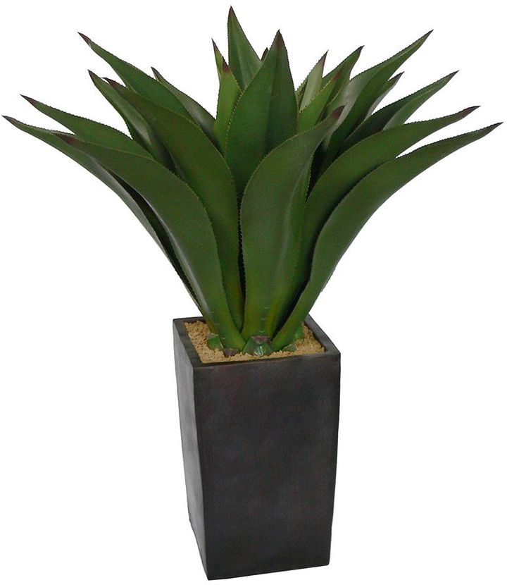 Laura Ashley lifestyles silk aloe plant