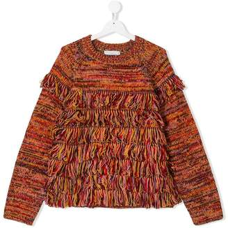 Stella McCartney TEEN tasseled jumper