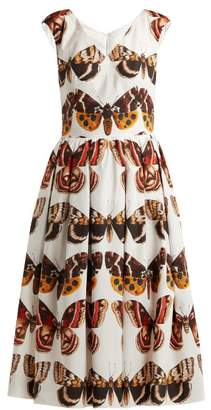 Dolce & Gabbana Butterfly Print Pleated Cotton Dress - Womens - Brown White