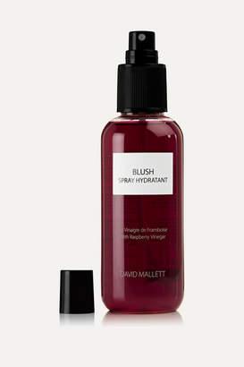 styling/ David Mallett - Blush Hydration Spray - Colorless