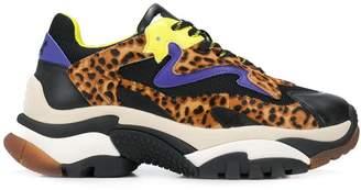 Ash addict leopard-print trainers