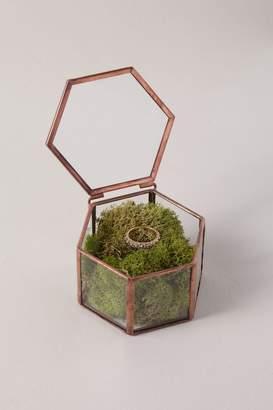Whichgoose Glass Trinket Box