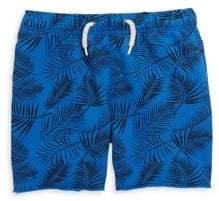 Appaman Baby's Palm Tree Print Camp Shorts