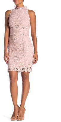 Donna Ricco Lace Ruffle Collar Dress