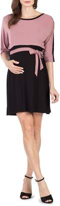 Savi Mom Siena Maternity/Nursing Dress