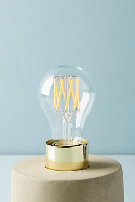 Tala Globe 6W LED Bulb