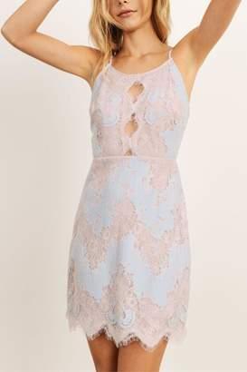 Storia Multi-Colored Lace Dress