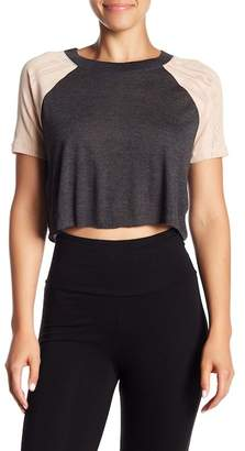 Alo Sport Cropped Top