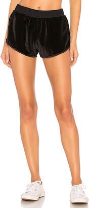 Maaji Velour Shorts