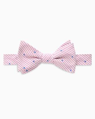 DAY Birger et Mikkelsen Southern Tide Charleston Dot Bow Tie