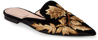 Alberta Ferretti Velvet Pointed Toe Embroidered Mules