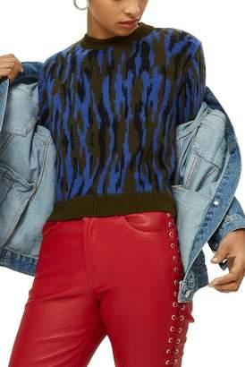 Topshop Zebra Print Sweater