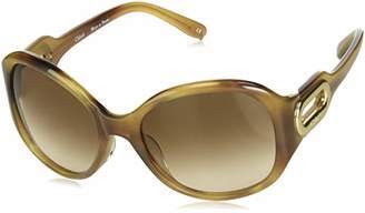 Chloé CL2193 / Frame: Brown Havana Lens: Brown Gradient
