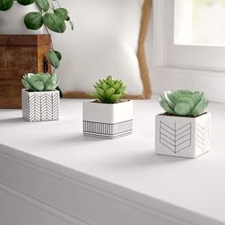 Mistana 3 Piece Ceramic Succulent Desktop Plant in Pot Set