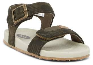 Dr. Scholl's Rhodes Sandal (Toddler & Little Kid)