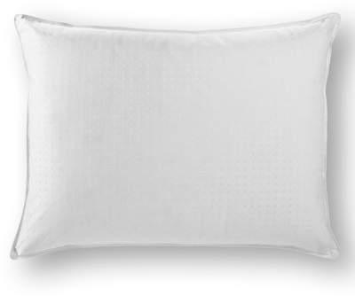 Wayfair Goose Down Pillow