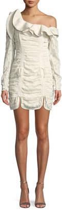 Self-Portrait One-Shoulder Floral Fil-Coupe Ruffled Mini Dress