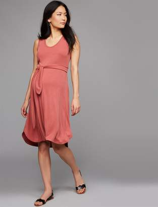 A Pea in the Pod Tie Front Smocked Maternity Dress