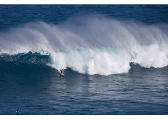 Pottery Barn Teen Hawaii Surfer Surf Wall Mural