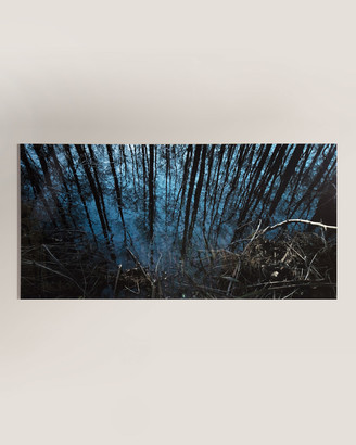The Woods Four Hands Art Studio Into Photography Handmade HD Metal & Acrylic Print Art