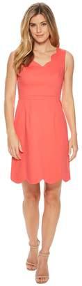 Adrianna Papell Elsa Cotton Nylon Scalloped A-Line Women's Dress
