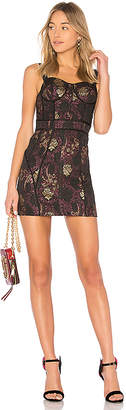 LPA Dress 447