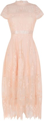 Foxiedox Long dresses