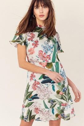 Paper Dolls Oasis Hot Tropics Multi Natural High Neck Skater Dress