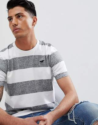 Hollister Longline Block Stripe Crew Neck T-Shirt Seagull Logo in Grey/White