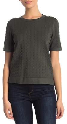 Catherine Malandrino Crew Neck Short Sleeve Textured Sweater (Petite)