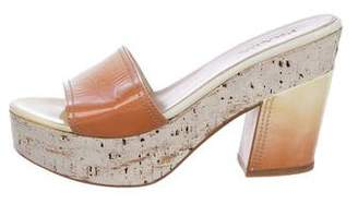 Prada Ombré Slide Sandals