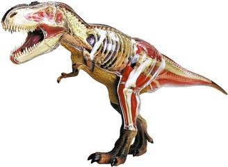 N. 4D T-Rex Anatomy Model by John Hansen Co.