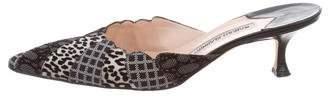 Manolo Blahnik Patterned Pointed-Toe Mules