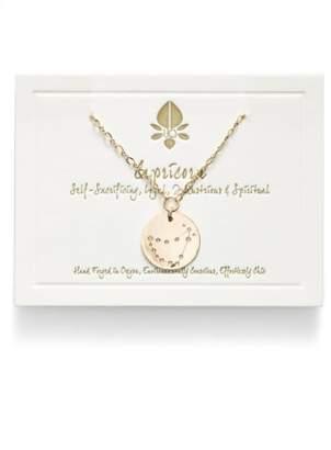 Nashelle Ija 'Large Zodiac' 14k-Gold Fill Necklace