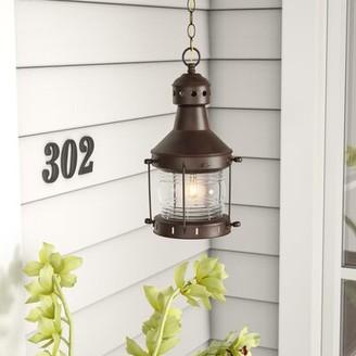 Charlton Home Oakhill 1-Light Outdoor Hanging Lantern Charlton Home