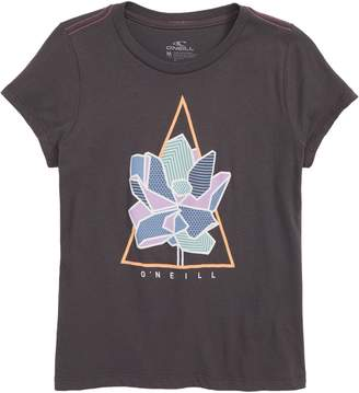 O'Neill Color Theory Tee