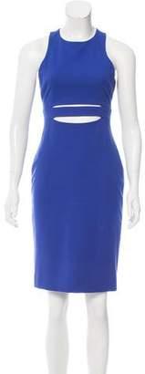 Cushnie et Ochs Sleeveless Knee-Length Dress