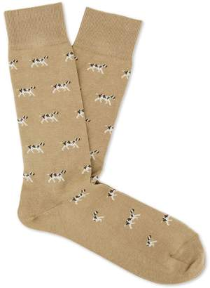 Setter Socks $24 thestylecure.com