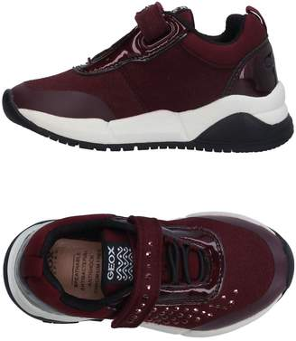 Geox Low-tops & sneakers - Item 11312668FP