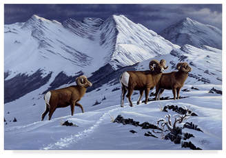 """High Country Wilhelm Goebel 'High Country Rams' Canvas Art - 12"""" x 19"""""""