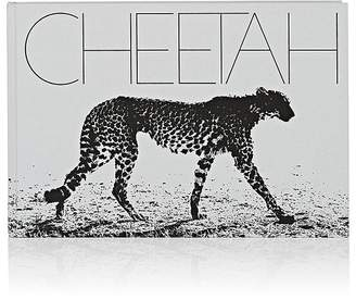 D.A.P. Mark Segal: Cheetah