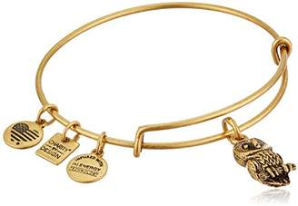 Alex and Ani Charity By Design Ode To The Owl Bangle Bracelet