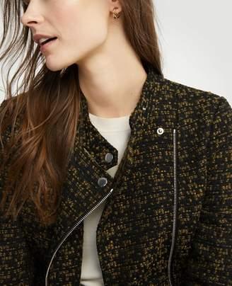 Ann Taylor Petite Tweed Moto Jacket